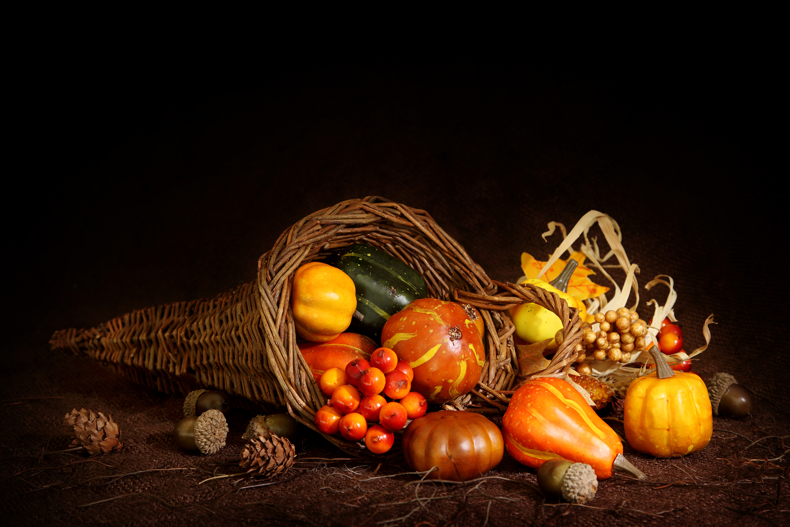 Cornucopia with pumpkins on brown background, close up